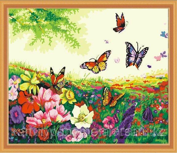 """Картины по номерам  - Алматы, """"Бабочки"""""""