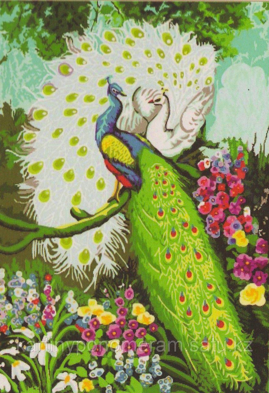 """Картины по номерам  - Алматы, """"Прекрасные павлины"""""""