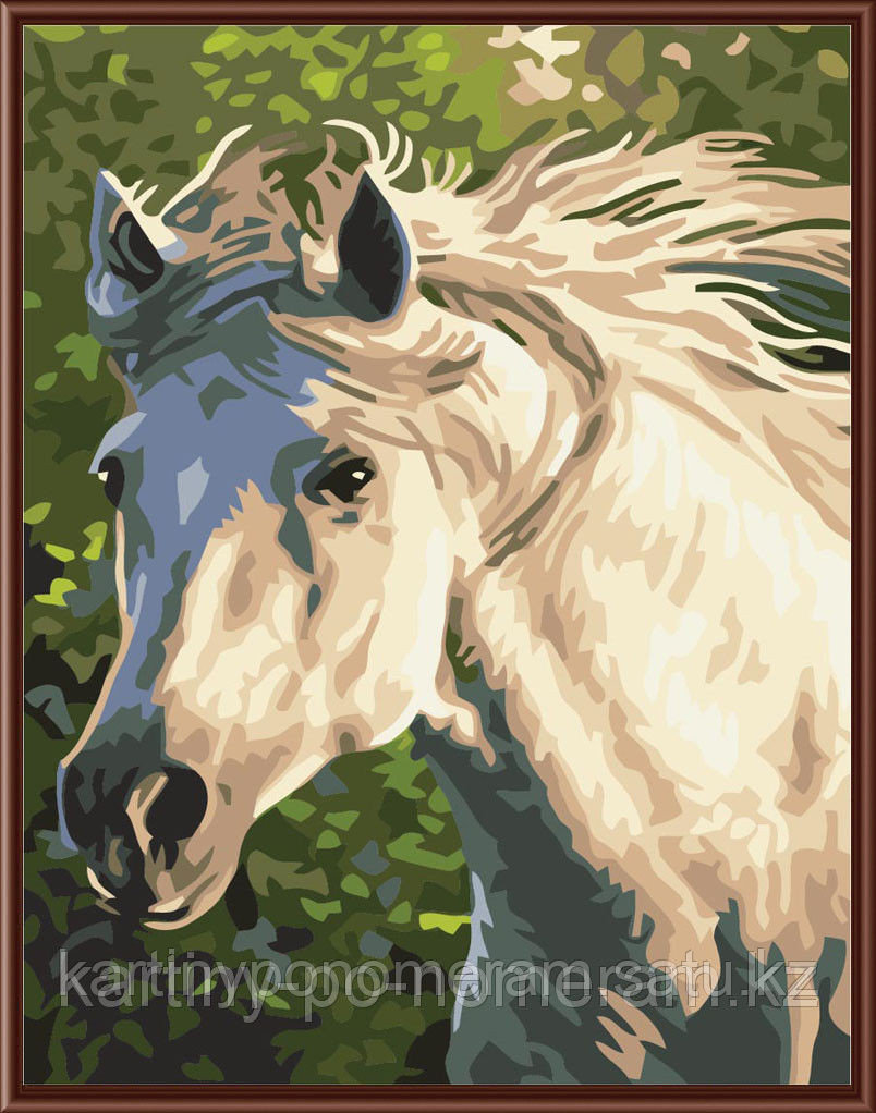 """Картины по номерам  - Алматы,  """"Серый конь"""""""