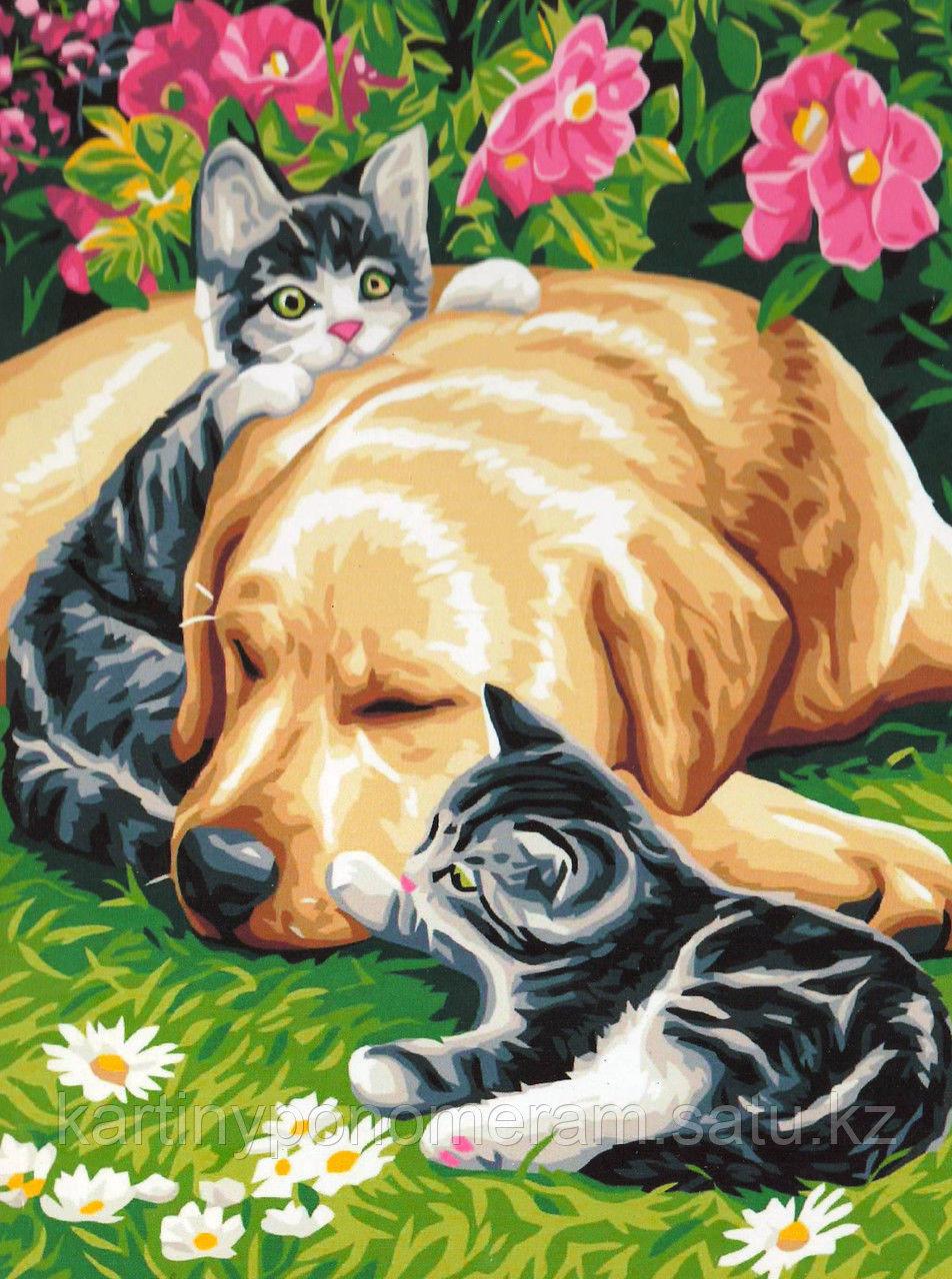 """Картины-раскраски по номерам,  """"Лабрадор с котятами"""""""