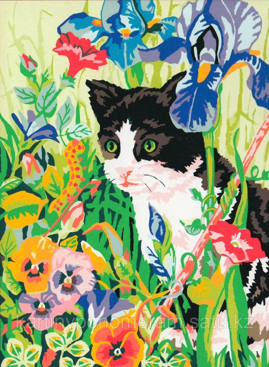"Картины-раскраски по номерам,  ""Котик в ирисах"""