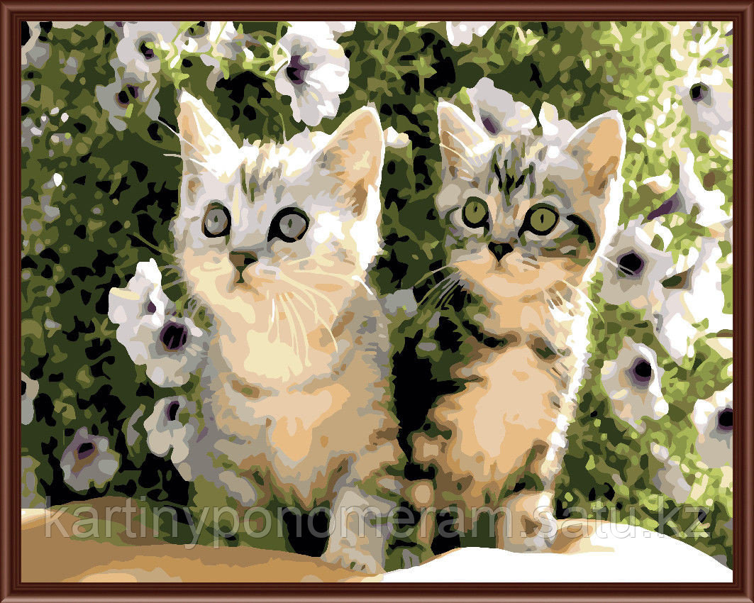 """Картины-раскраски по номерам,  """"Котики"""""""