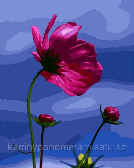 "Картина по номерам ""Розовый цветок"""