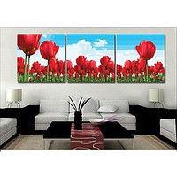 """Картина по номерам """"Красные тюльпаны"""", триптих"""