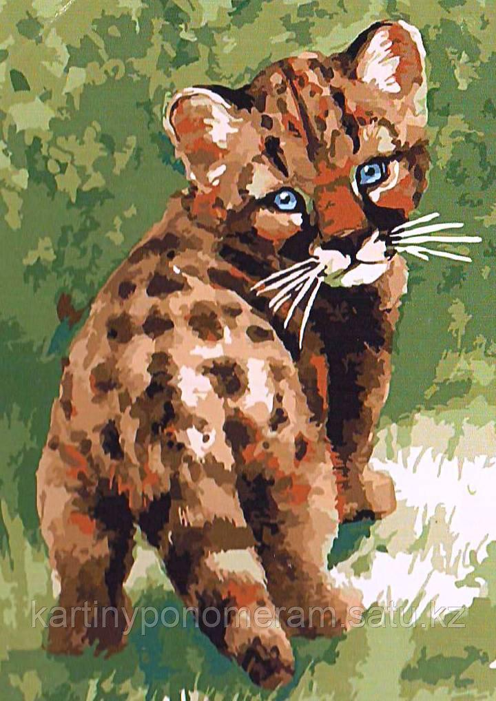 """Картины по номерам  """"Котенок леопарда"""""""