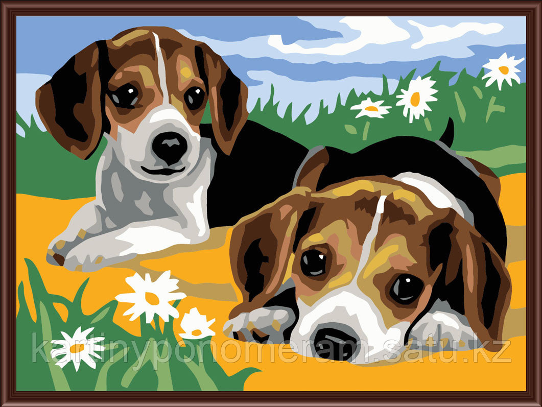 """Картины по номерам  """"Два щенка в ромашках"""""""