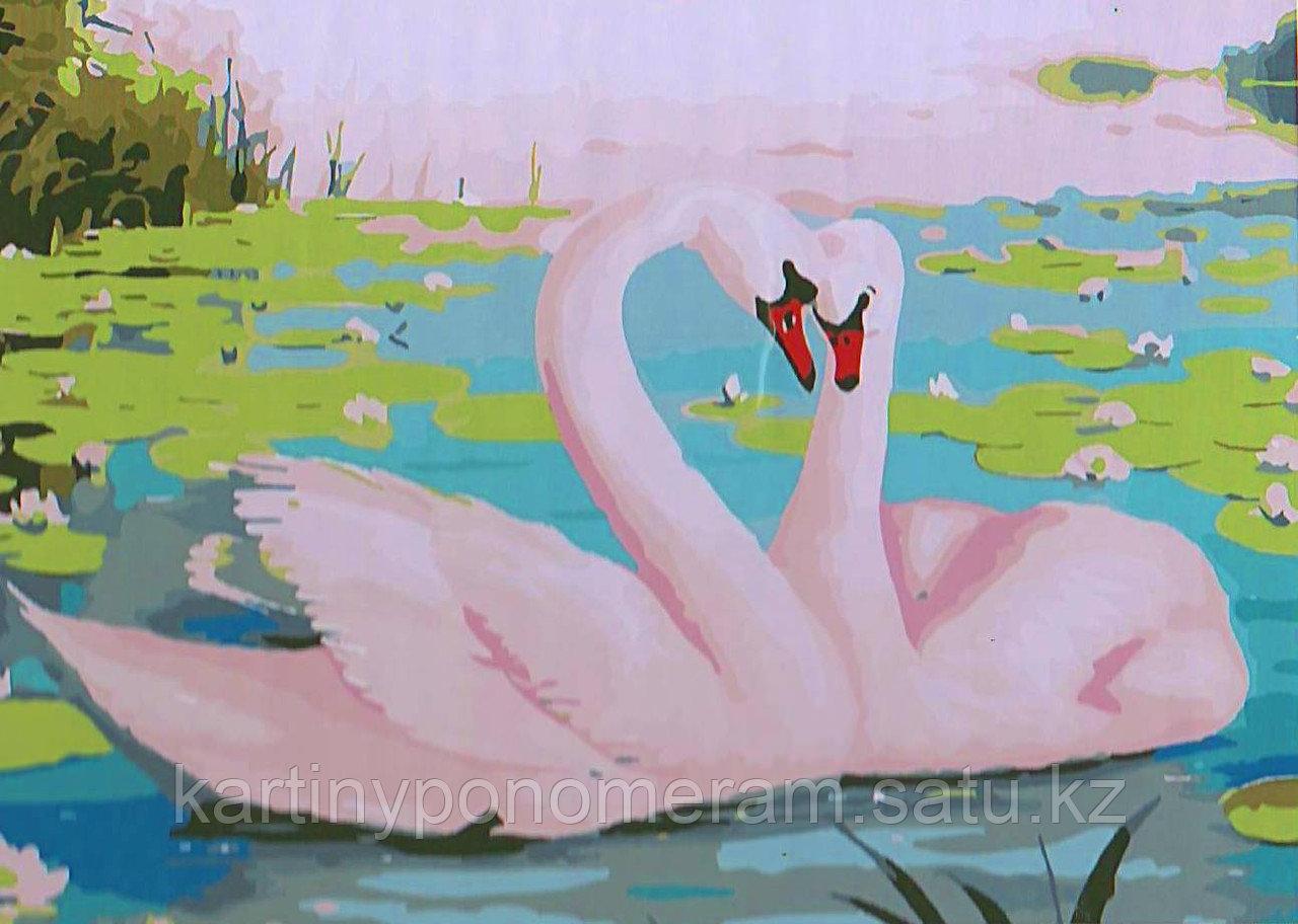 """Картина по номерам - """"Два лебедя"""""""