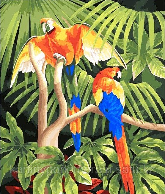 """Картина по номерам - """"Попугаи в тропиках"""""""