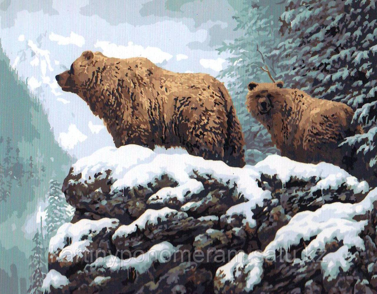 """Картина по номерам """"Медведи в горах"""""""