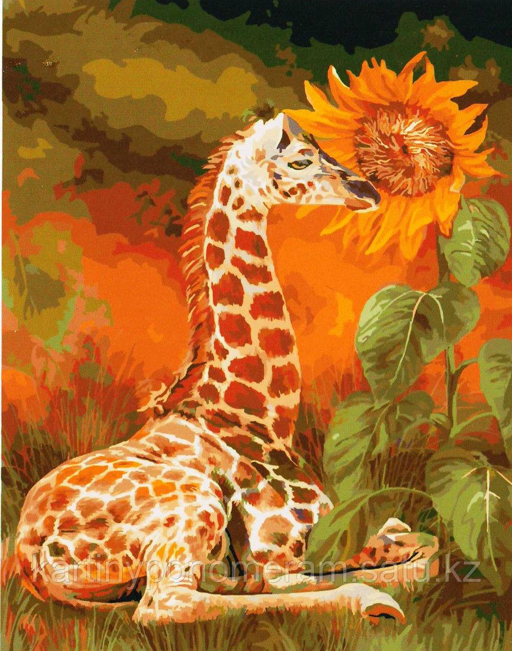 "Картина по номерам ""Жираф и подсолнух"""