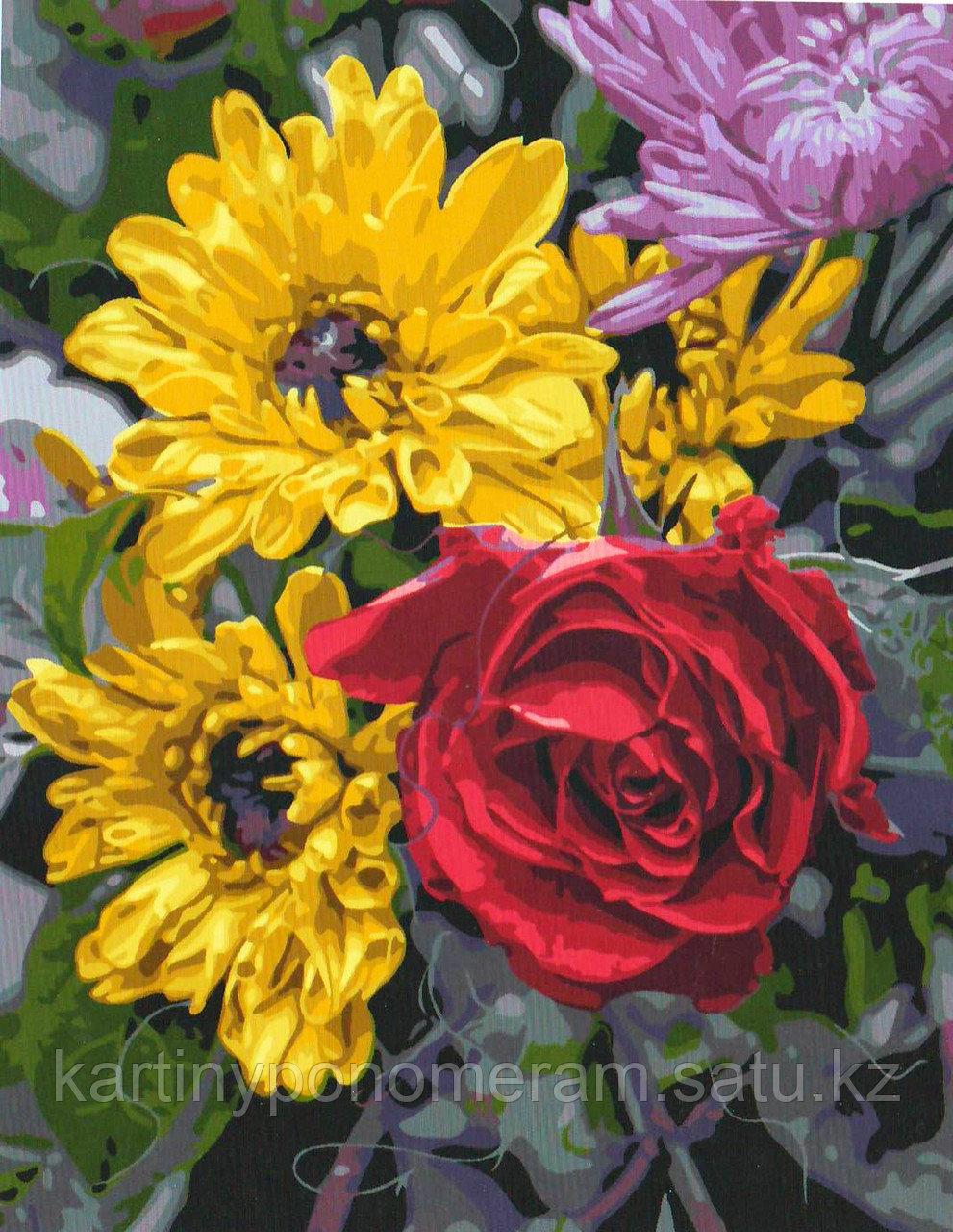 "Картина по номерам ""Хризантемы и роза"""