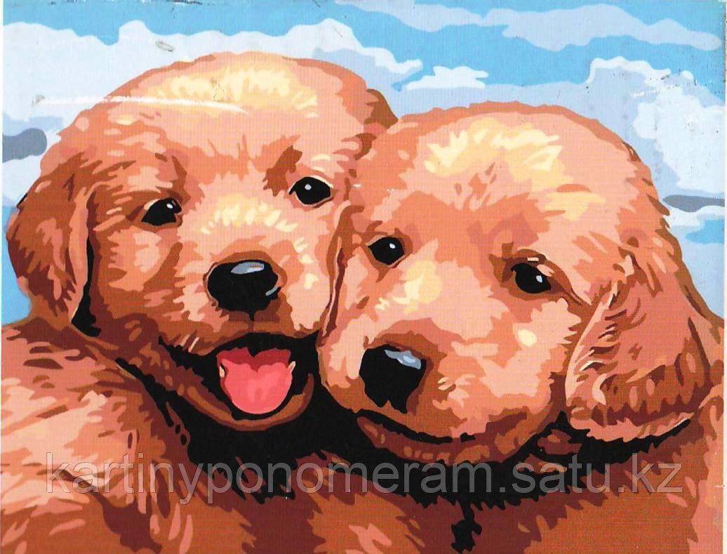"Картины по номерам ""Два щеночка"""