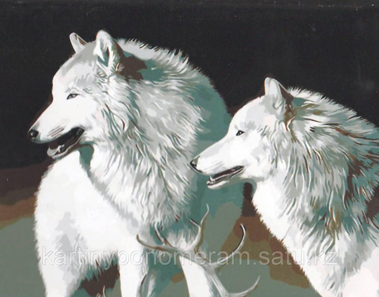 """Картина по номерам """"Белые волки"""""""