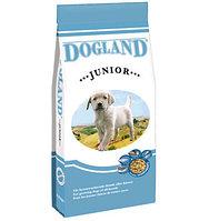 Сухой корм для щенков средних и крупных пород Dogland Junior