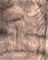Шпон Корень ореха 0,6 мм