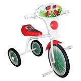 Велосипед трехколесный мод. 527-501-05 (без кузова) 01, фото 2