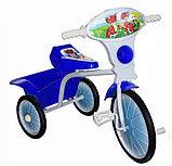Велосипед трехколесный мод. 527-501-05 (с кузовом) 05, фото 3