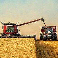 Сельскохозяйственная автошина