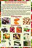 Плакаты Механическая обработка овощей