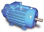 Электродвигатель асинхронный фланцевый, фото 2
