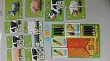 Настольная игра Счастливая ферма, фото 4