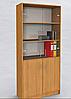 Шкаф со стеклянными дверцами D3-3