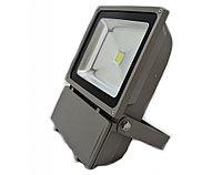 Светодиодный прожектор LED RGB, 100w