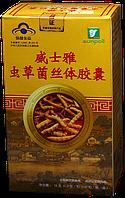 Таблетки кордицепса китайского 60 шт