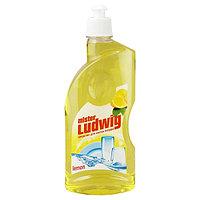 Средство для мытья посуды Mister Ludwig