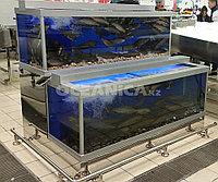 Изготовление витрин для торговли живой рыбой и морепродуктами в Казахстане