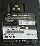 Аккумулятор для Motorola GP, фото 2