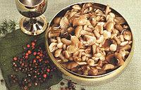 Цептер рецепты. Холодные закуски. Маринованные грибы ( опята )