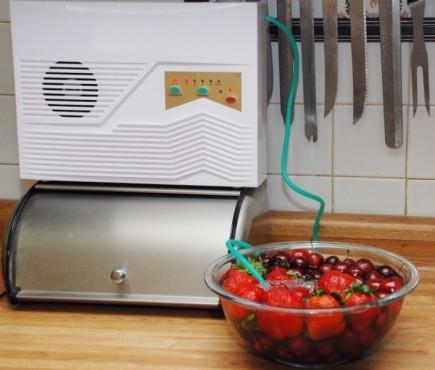 """С помощью """"GL-2186"""" можно озонировать воду с помещенными в нее продуктами, что продлит их свежесть"""