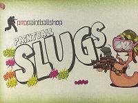 Пейнтбольные шары SLUGS 50 калибр