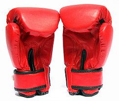 Боксерские перчатки Top Ten, фото 3