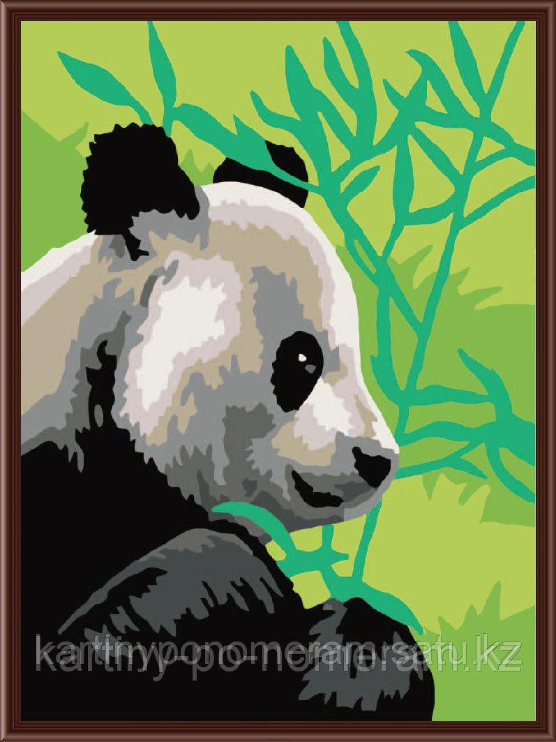 """Картины по номерам  - Алматы,  """"Панда в бамбуке"""""""
