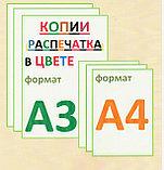 Распечатка А3 формата, фото 2