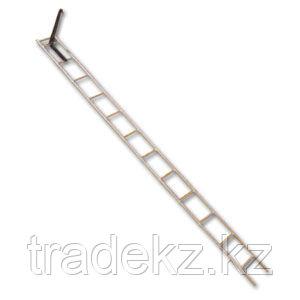 Лестница-штурмовка ЛШ, высота 4100 мм, фото 2