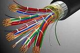 Телефонный кабель ТППэпЗ  20х2х0,50, фото 3