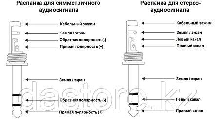 Neutrik NTP3RC-B разъём miniJack , угловой, TRS 3.5 мм, фото 2