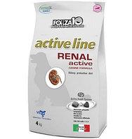 Cухой корм для собак с почечной недостаточностью Forza10 Renal Active (рыба)