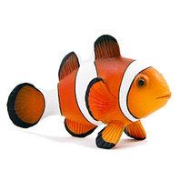 Mojo Рыба Клоун