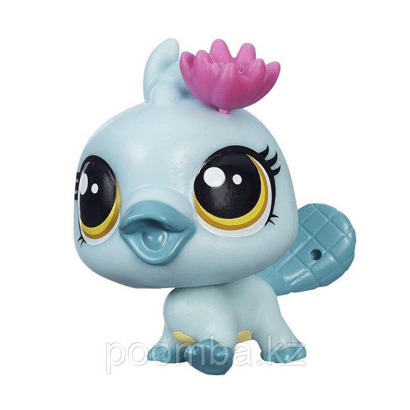 Зверушка Littlest Pet Shop - Утконос Орна с цветком