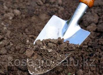 Анализ почвы на содержание микроэлементов