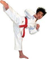 Кимоно для каратэ, фото 3