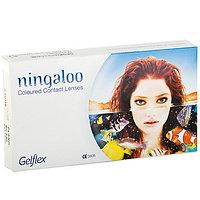 Черные контактные линзы ningaloo (2 блистера ) 0.00