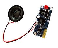 Замена / Ремонт / Установка Bluetooth динамика на Гироскутер / Электроборд