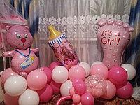 Фигуры из шаров в Павлодаре (Композиция на выписку), фото 1