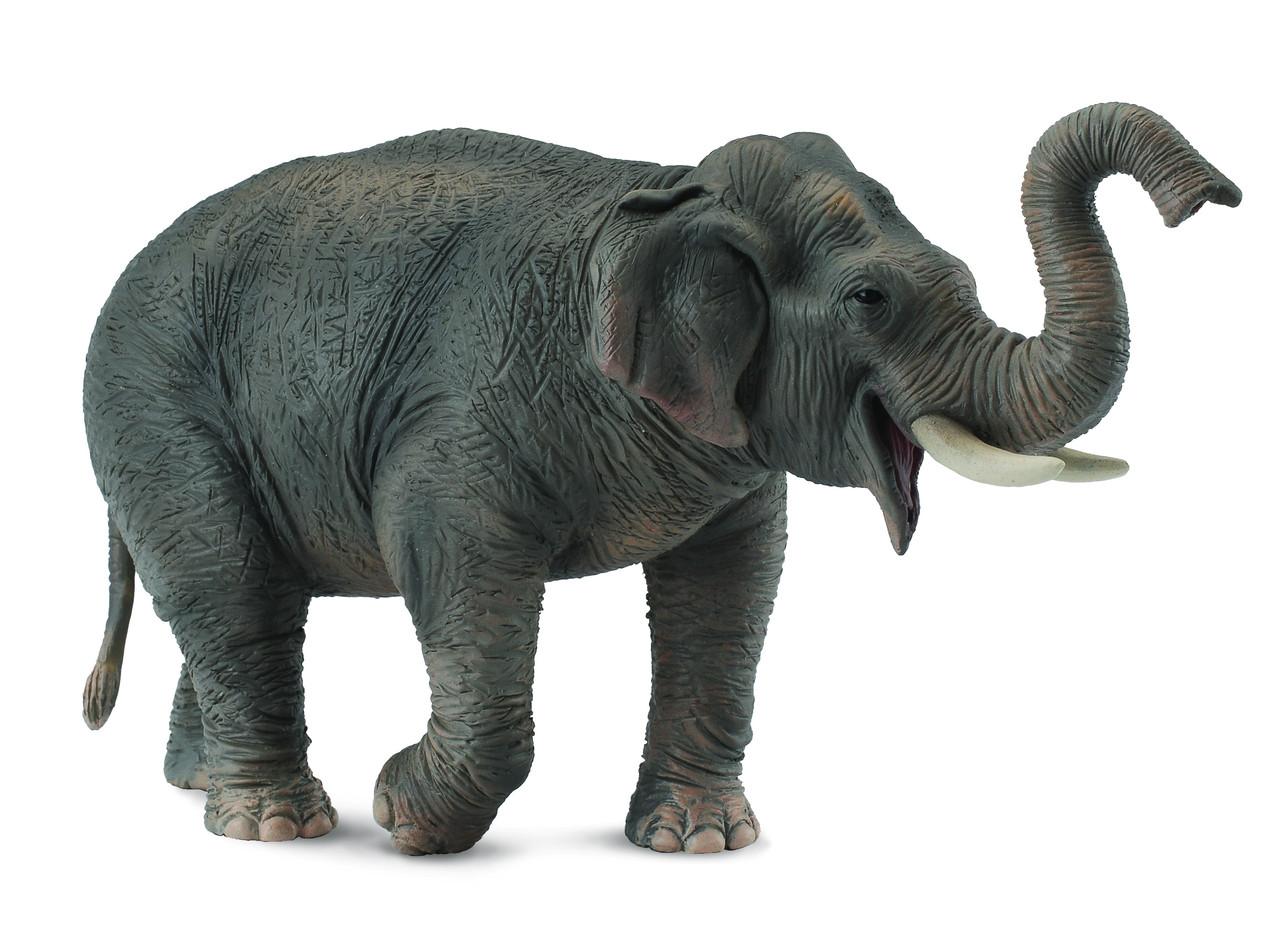 CollectA Фигурка Азиатский слон