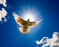 "Предназначение, миссия, смысл жизни, или найти свое ""место под Солнцем!"""